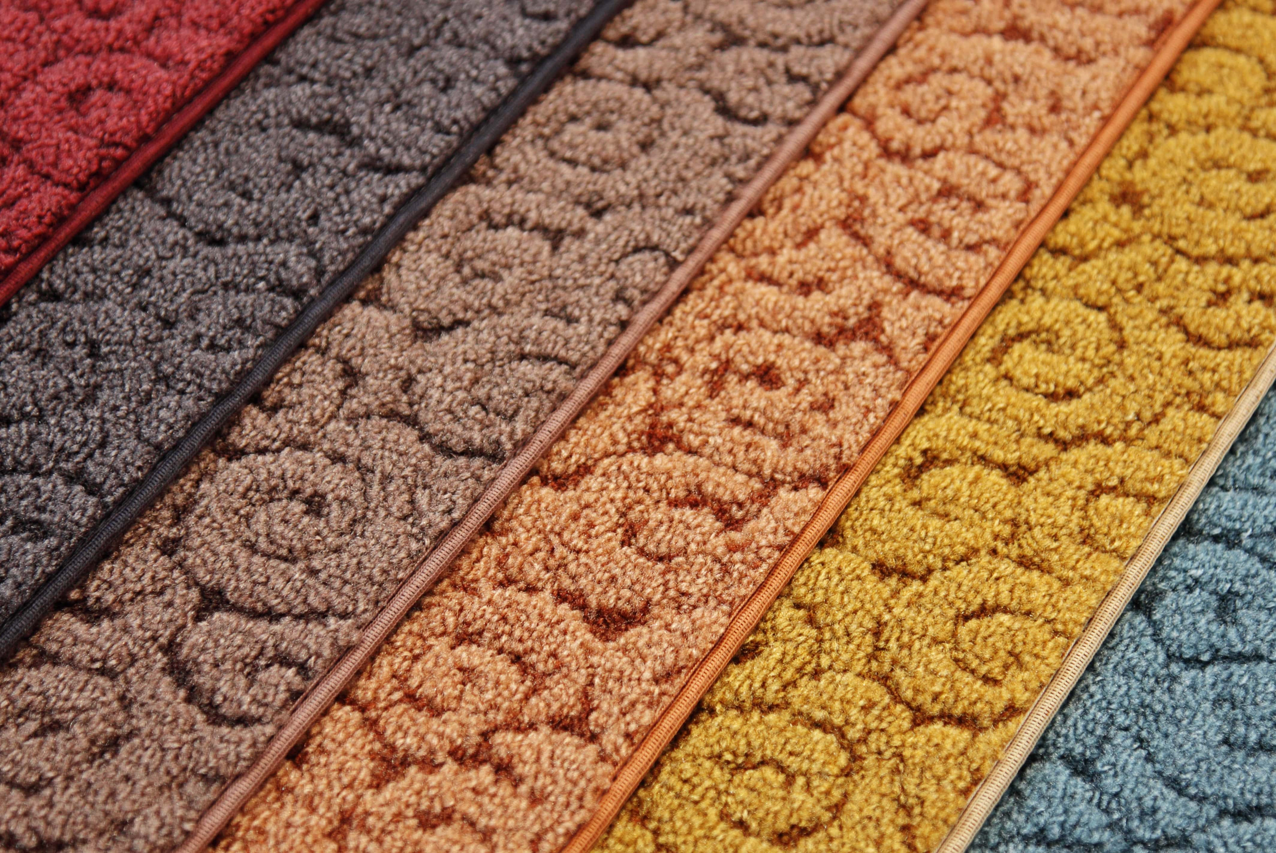Bright Textured Carpet Options - - Floor Coverings International Waukesha