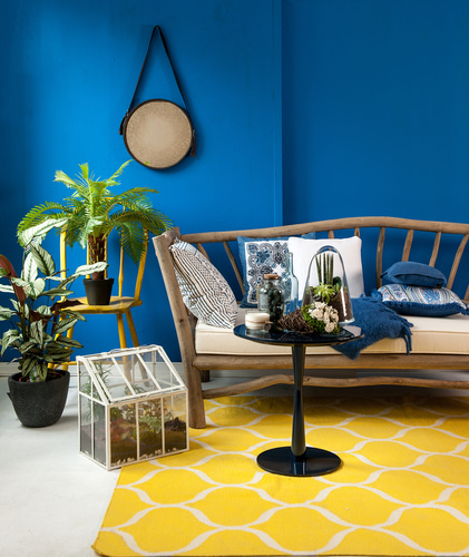Floor Coverings International Waukesha - Area Rug in Living Room