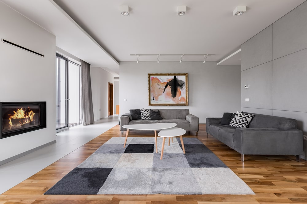 cozy living room with area rug and electric fireplace