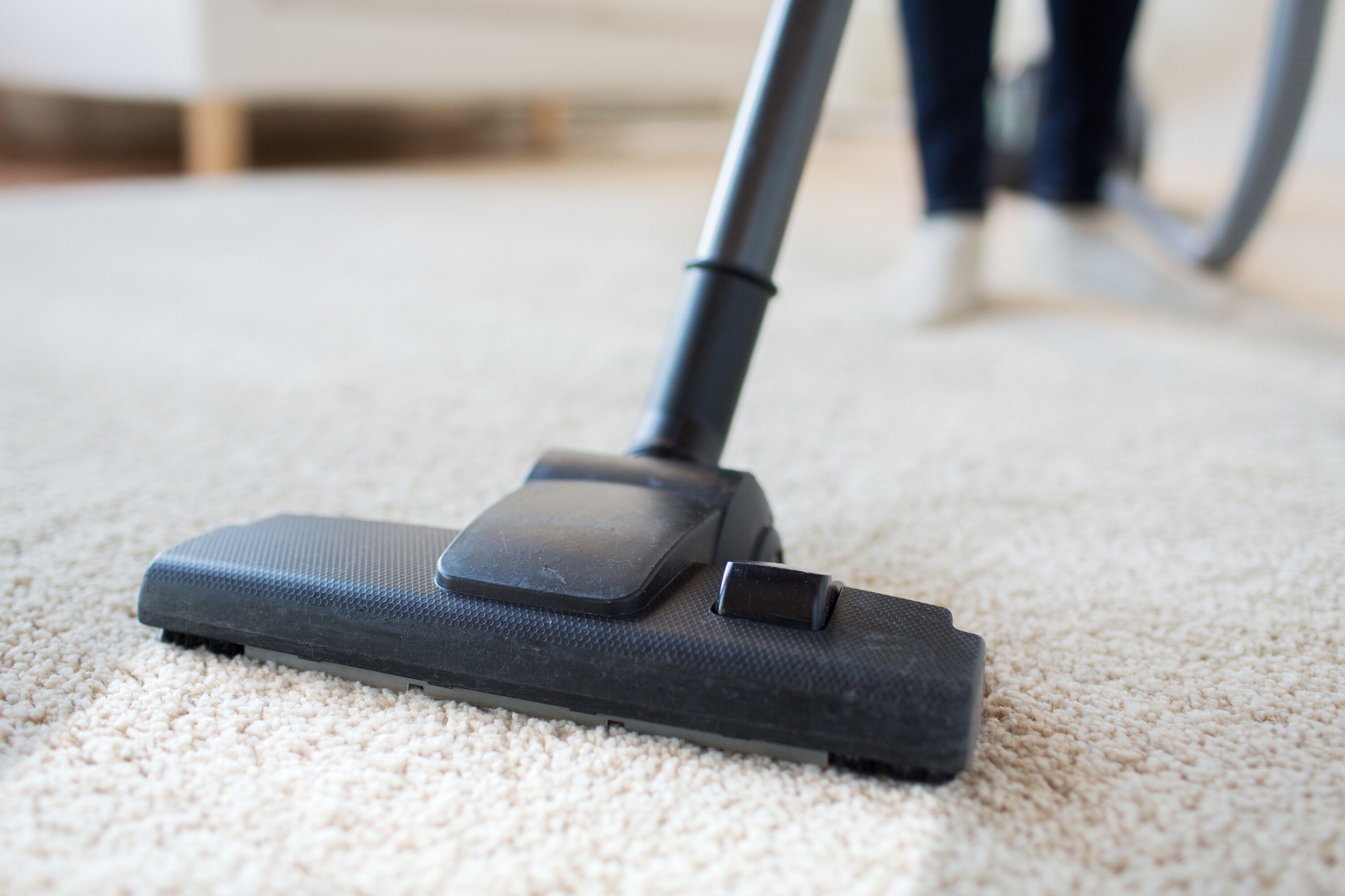 Carpeting being vacuumed in Concord, CA