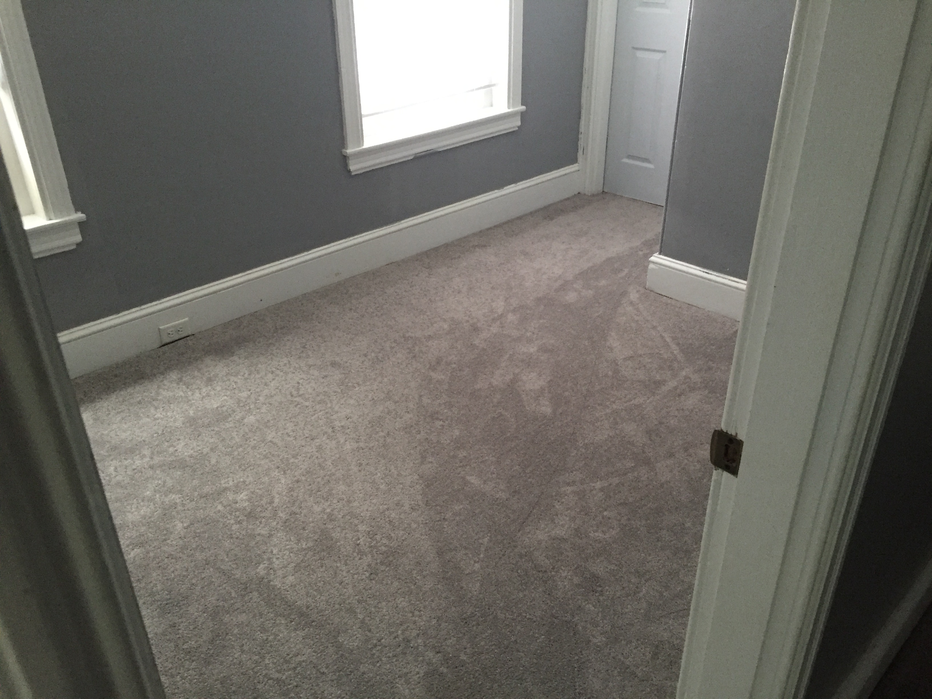 Carpet flooring norristown