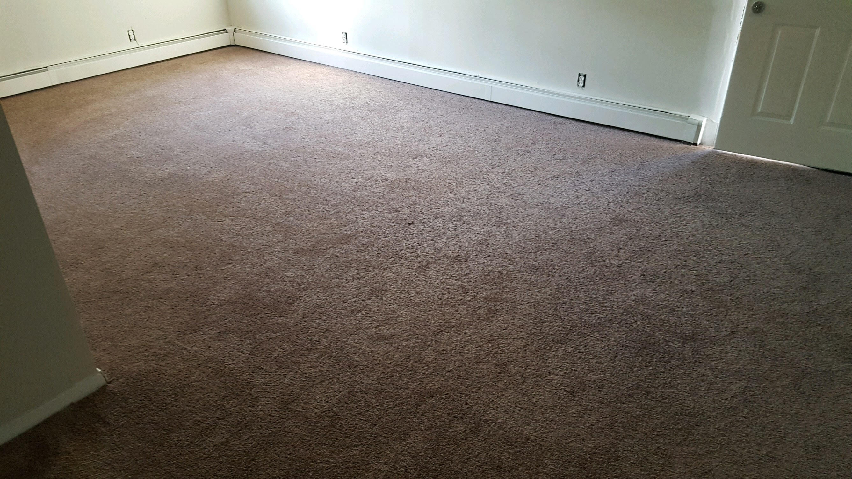 Carpet Installers in Centereach